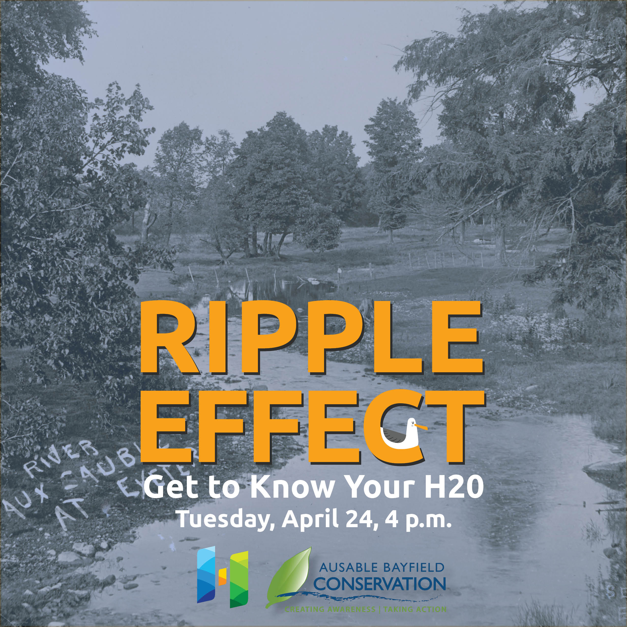 Ripple Effect: Get To Know Your H2)