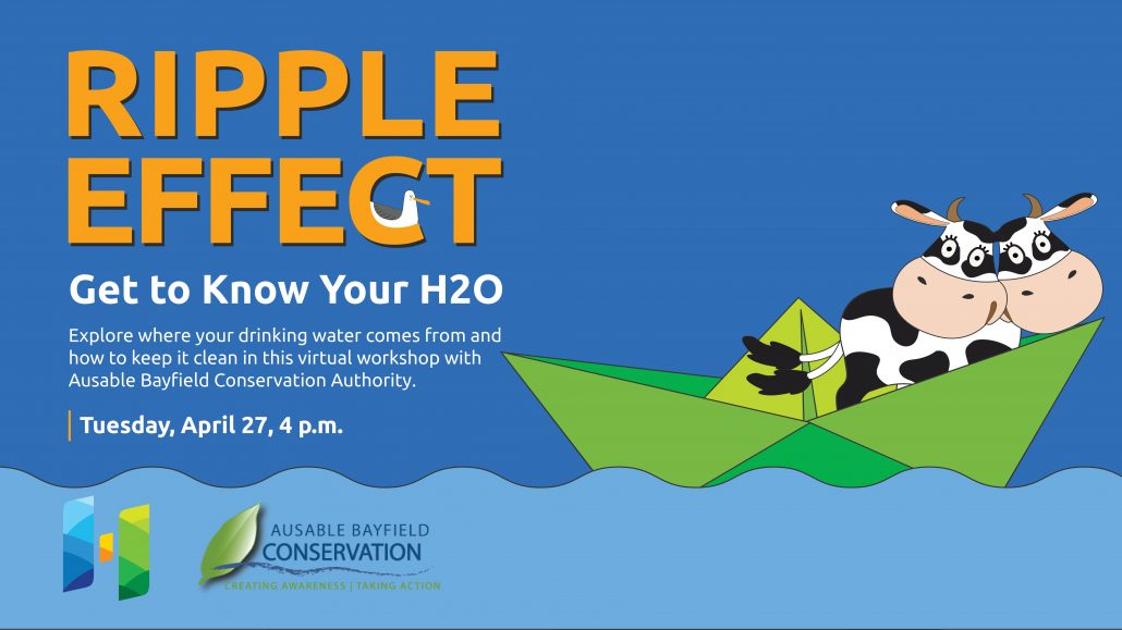 Ripple Effect: Get to know your H20 virtual event