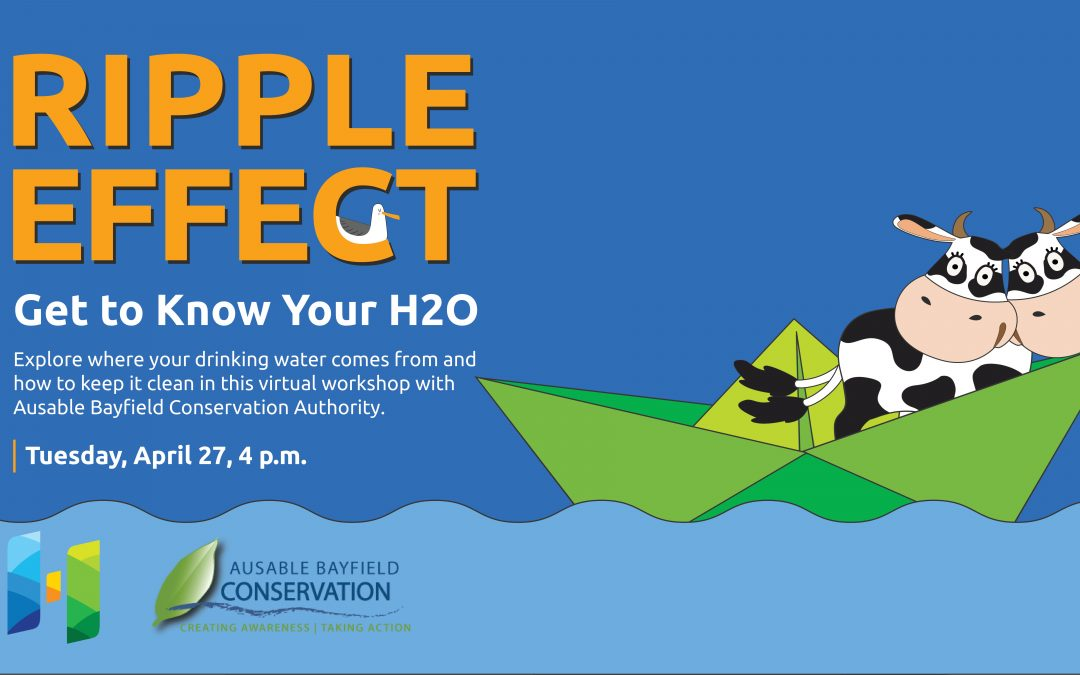 Ripple Effect: Get to Know Your H2O