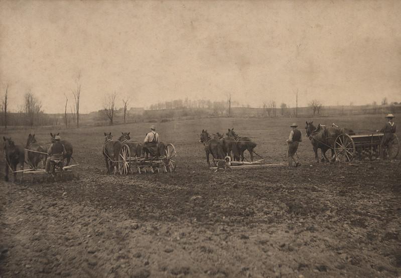 RR Sallows photo farmers in field